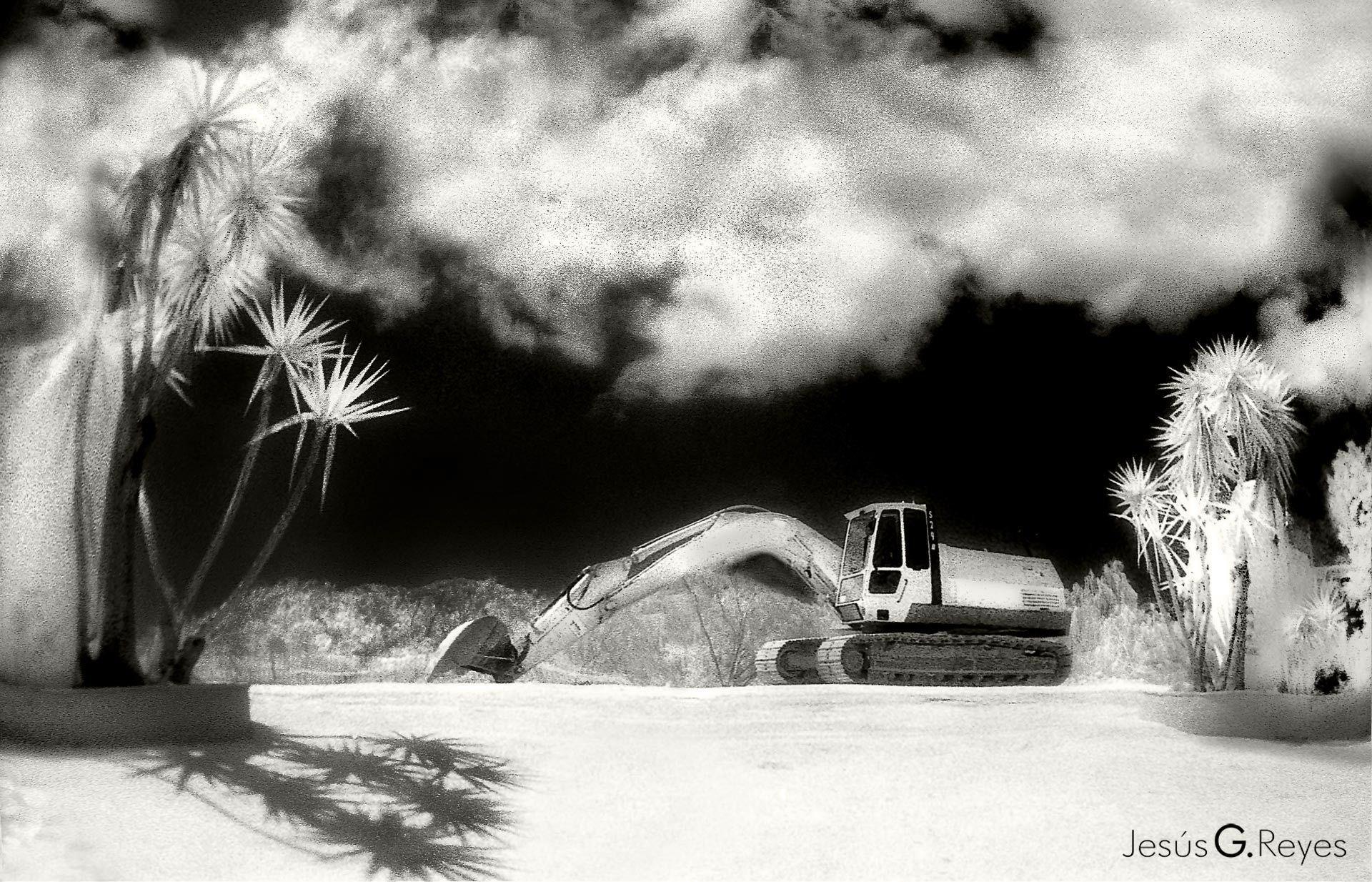 Excavadora en Tarifa