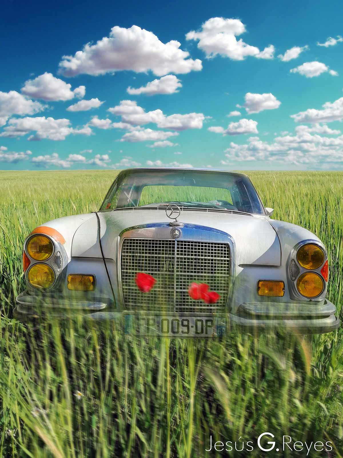 Agriculture photomontage